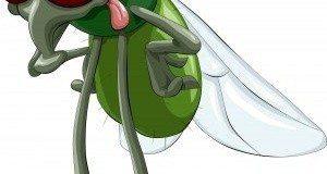 Green Pest