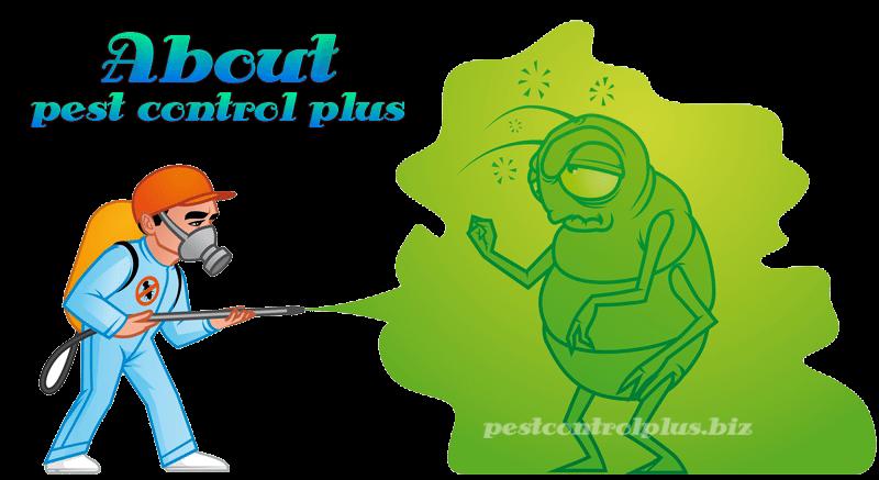 About Pest Control Plus