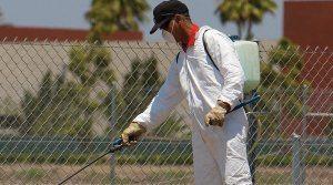 Pest Management Service personal