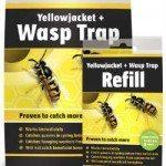Yellow Jacket Traps